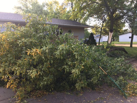 A downed tree is seen at a residence in Salem after