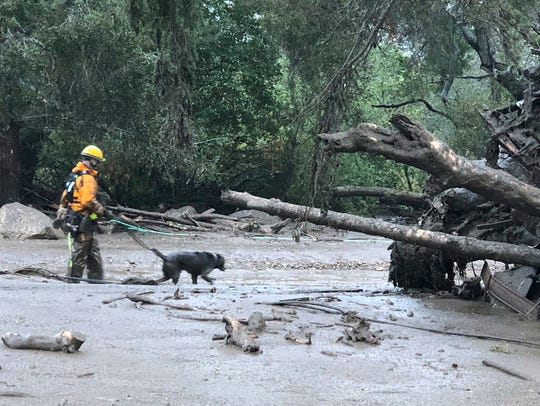 A Santa Barbara County Fire Department K-9 search and