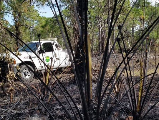 A wildfire burned 5 acres in St. Lucie County Jan.
