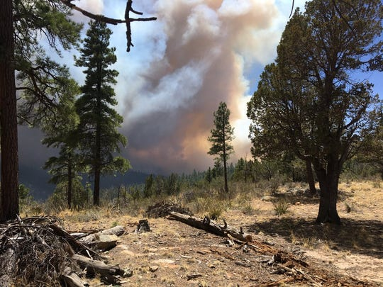 The Tinder Fire has burned through 500 acres north