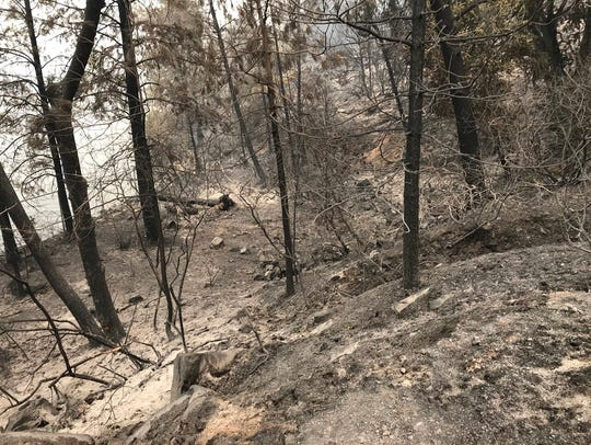 This was the view on July 31 is near the Kennedy Memorial at Whiskeytown Lake, five days after the Carr Fire blew up.