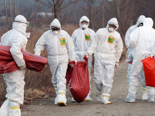 Health officials wearing protective suits carry a sack