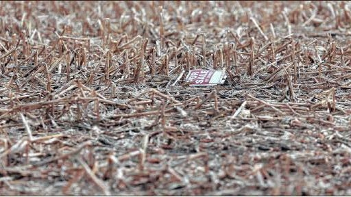 A stray For Sale sign lies in a cornfield north of Aberdeen on May 7.