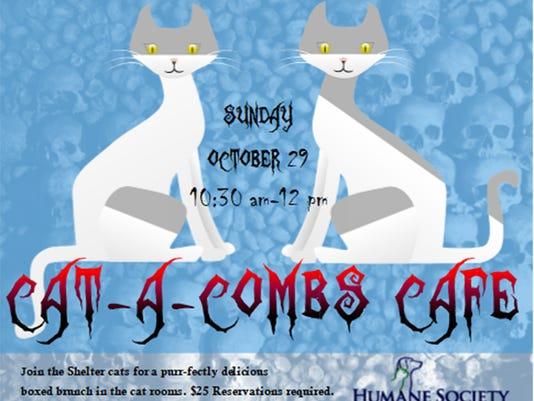 636427245711761487-cat-a-combs-10417-300ppi.jpg