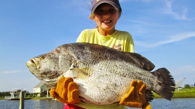 Sydney Guice, 9, of Mandeville, Louisiana holds what may be the IGFA Small Fry record tripletail.