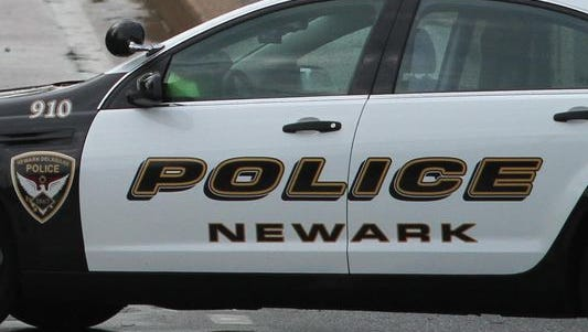 Newark, Del., police officers struck two loose dogs with their vehicles and shot one of them Friday, police said.