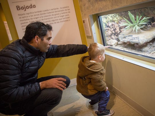Jabus Hamm points out a snake to his 2-year-old son Kai Hamm during a visit to the Las Cruces Museum of Natural History.