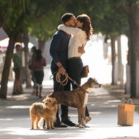 Review: 'Dog Days' a cute-but-sterile comedy about man's best friend