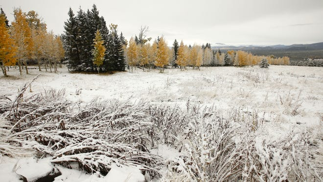 Snow dusts the western slope of the San Francisco Peaks on Tuesday, Oct. 20, 2015, at the Hart Prairie in northern Arizona.