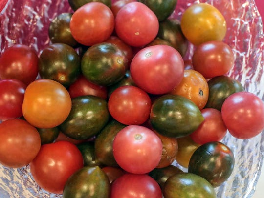 A cook-off a Atria Hacienda features tomatoes on Thursday,