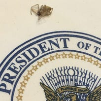 Easley pastor smacks President Trump's back, 'saved' his life from poisonous spider