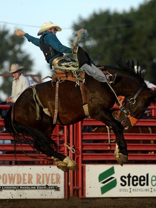 Rodeo Roundup