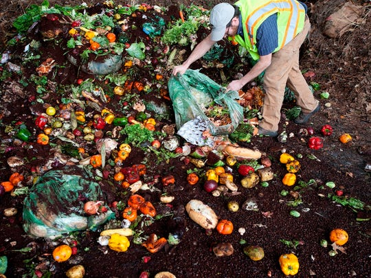 Green Mountain Compost Dan Goosen, general manager at Green Mountain Compost in Williston, tears open a compostable BioBag dropped off by haulers from various restaurants and Hannaford grocery stores in late April 2014.