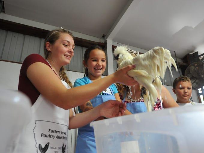 Cadance Shiflett, 7, of Diagonal, washes a chicken