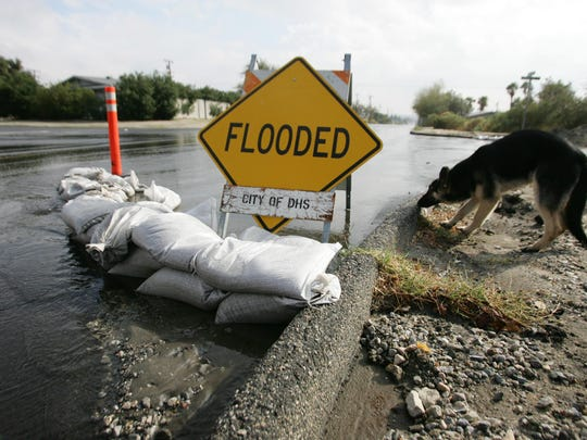 A German shepherd sniffs behind a flooded sign and sandbags posted at the intersection of Mesquite and Cahuilla Avenues in Desert Hot Springs on Feb. 6, 2010.