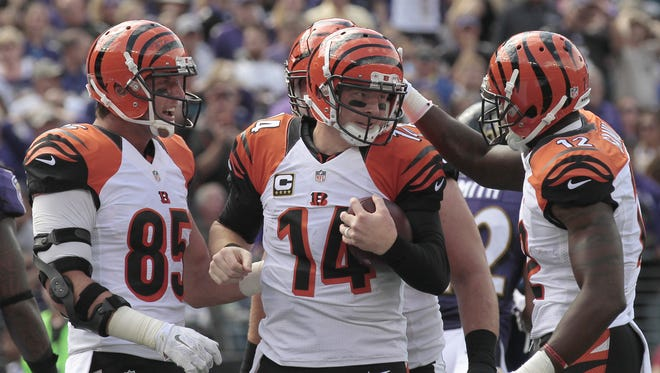 The Bengals celebrate an Andy Dalton rushing touchdown on Sunday.