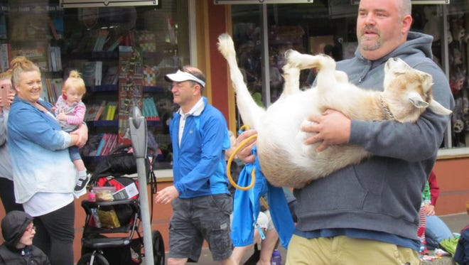 Sometimes there's a bit of a workout involved in the Silverton Pet Parade.
