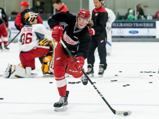 Red Wings prospect Malte Setkov