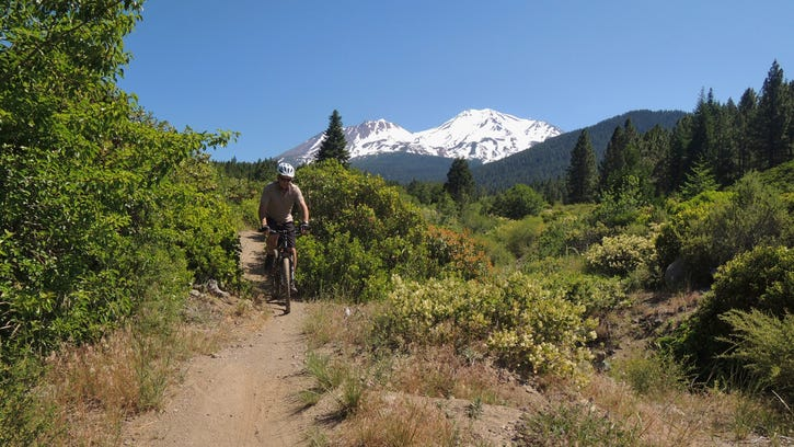 The Gateway Trail in U.S. Forest Service land near Mt. Shasta includes open areas with views of Mt. Shasta as well as shady forest sections.