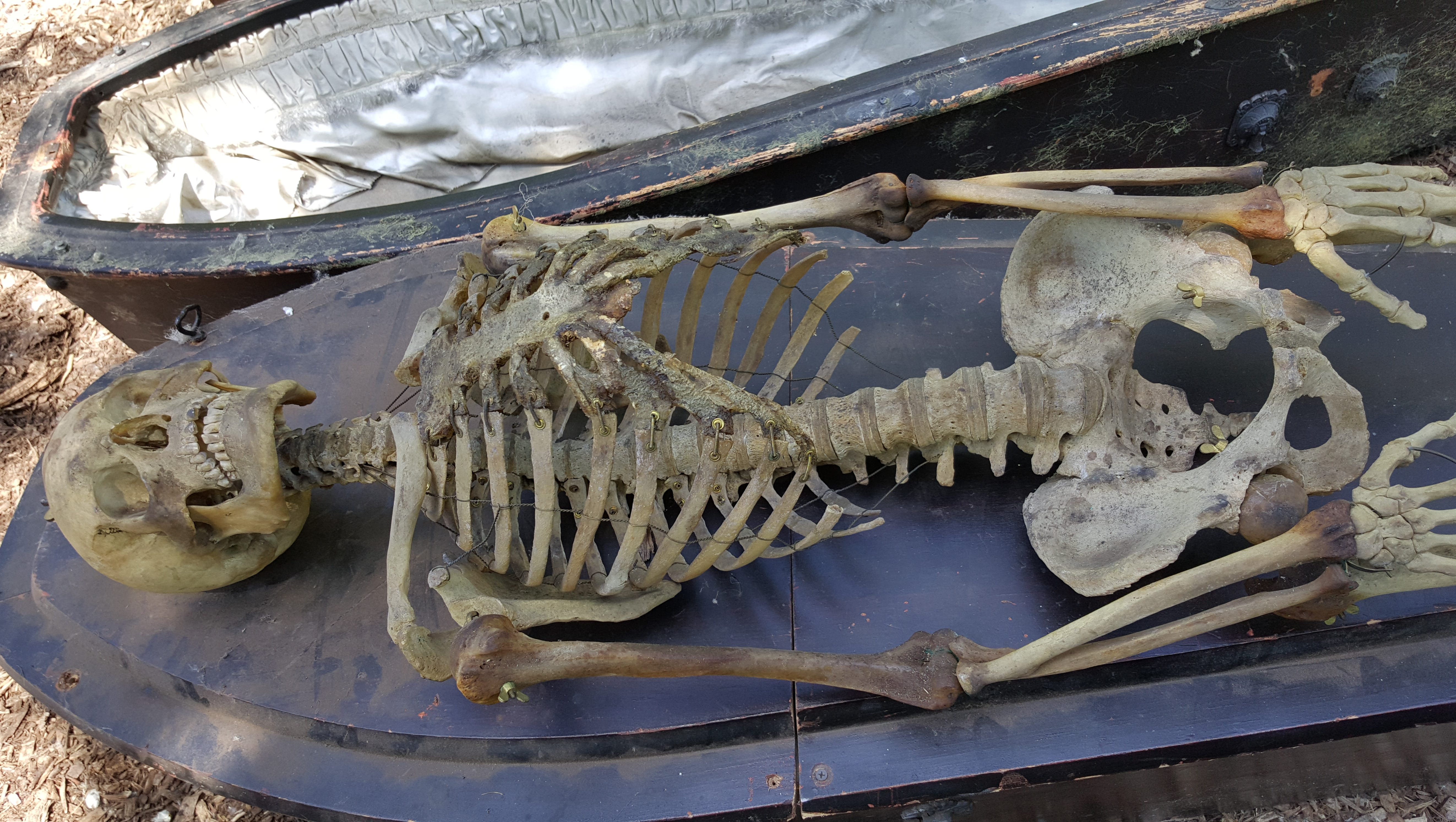 Skeletons Found At Terror On The Fox