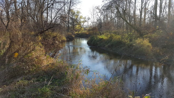 A parcel of land set aside for a possible Casco Township park has frontage on the Belle River.