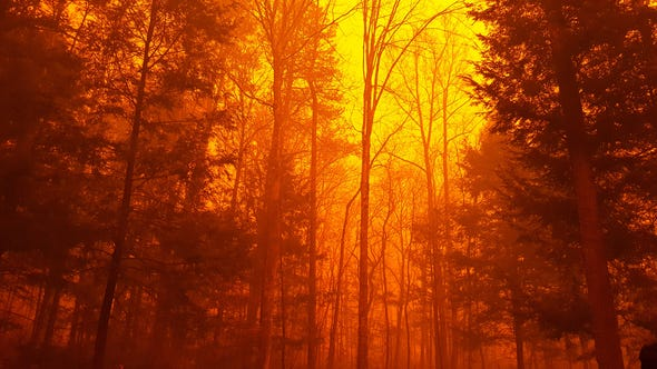 The wildfire inside the Great Smoky Mountains National