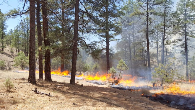Blacklining has been completed on the L-T West Prescribed Burn. According to a news release, approximately 2,000 acres have been burned.