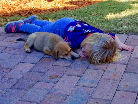 """Jim Gordon of Bonita Springs writes: """"I was shooting at the Bonita Springs Veterans' Day ceremony at Riverside Park when I saw a family beside the 'No one left behind' memorial. The image of this little girl and her puppy laying on the pavers in front caught my attention. It was her dad, I think, who encouraged me to take the shot."""""""