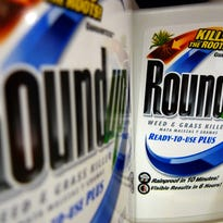 Roundup herbicide, a product of Monsanto, are displayed on a store shelf, in St. Louis.