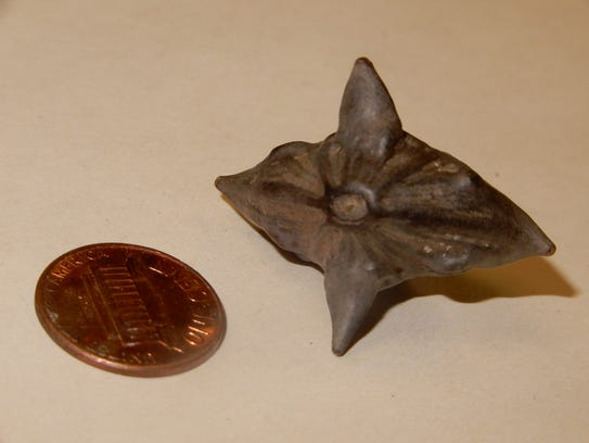 Water caltrop is a nuisance aquatic plant.