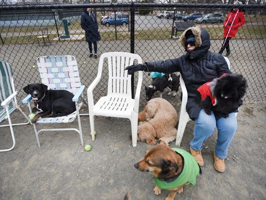 Teaneck resident Janet Abbott calls her dog Gypsy, left, at Phelps Park in Teaneck on March 20, 2018.
