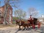 Best mode of transportation down Duke of Gloucester street, Colonial Williamsburg.