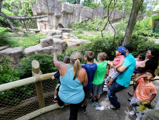 June 7, 2016: Cincinnati Zoo and Botanical Garden, Harambe, Gorilla, Liz Dufour