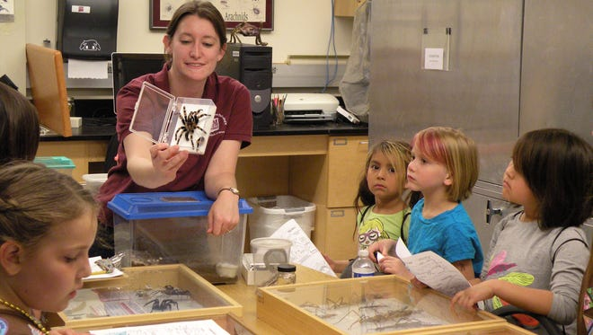 New Mexico State University Arthropod Museum Curator Jennifer Shaughney describes a tarantula to Girl Scouts Troop 61061 during a presentation. Join the Museum of Nature & Science, 411 N. Main St., from 10 a.m. to noon for an expedition into the world of bugs!  Living specimens from the Museum of Nature & Science and Cross City Exotics and preserved specimens, courtesy of the NMSU Arthropod Museum, will be featured Saturday, Aug. 10.