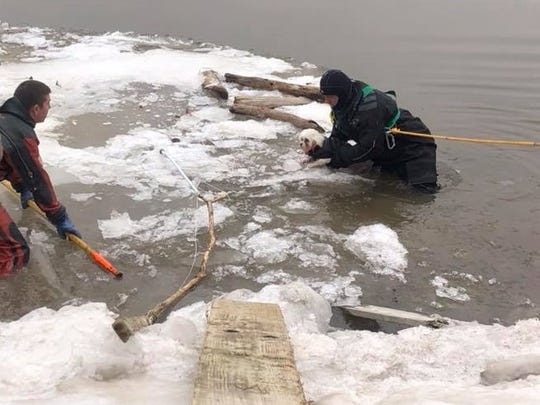 Firefighters rescue a dog that had slipped onto ice