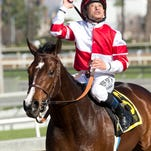 Jockey Mike Smith guides Songbird to the winner's circle after their victory in the Grade II, $300,000 Las Virgenes Stakes, Saturday, February 6, 2016 at Santa Anita Park, Arcadia CA. © BENOIT PHOTO