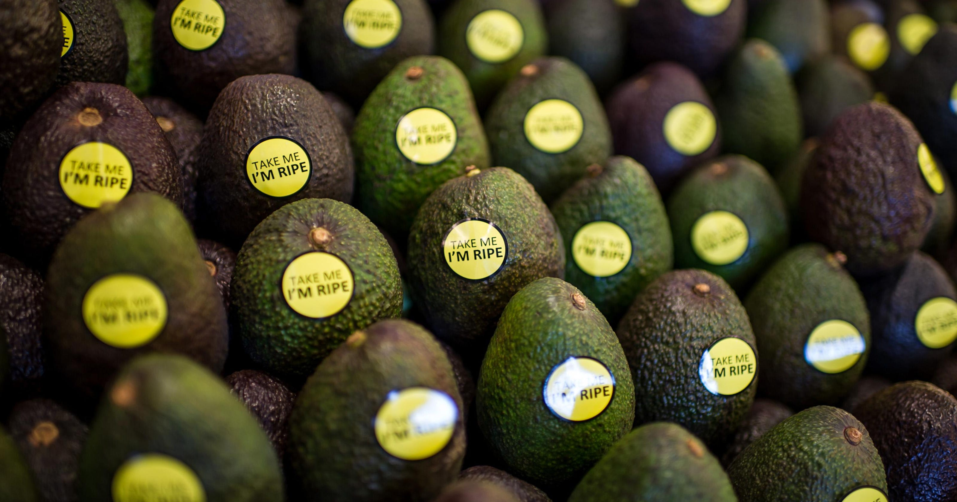 Avocado prices are the pits