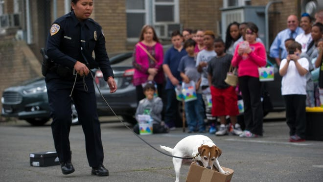 Stockton Unified police Officer Salin Chrim leads the drug-sniffing Jack Russell terrier Yoda through a demonstration at the Stockton Unified School District Police Department's open house event in 2017.