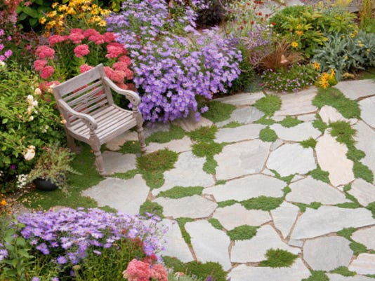 STOCKIMAGE-Lawn&Garden