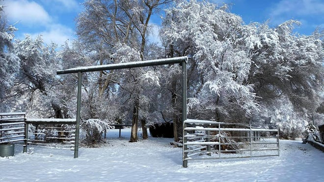A beautiful snow-covered scene in Turon, Kansas.