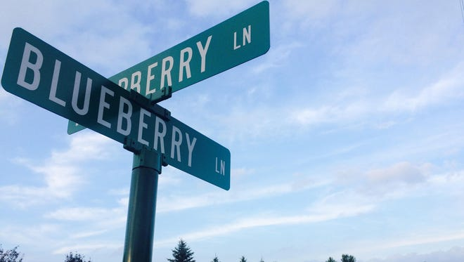 Rib Mountain will soon pave Mountainberry Court off Blueberry Lane.