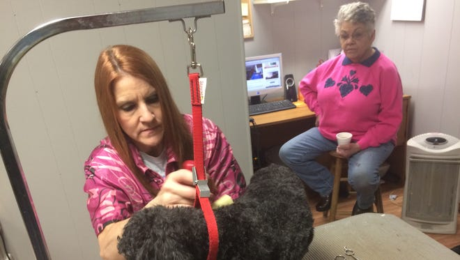 Carla Van Tassel grooms a dog at Doggie Boutique Lil' Pets while Bev Stoflet looks on. Van Tassel and Stoflet, co-owners of the business, moved it from Plover to Stevens Point in January.