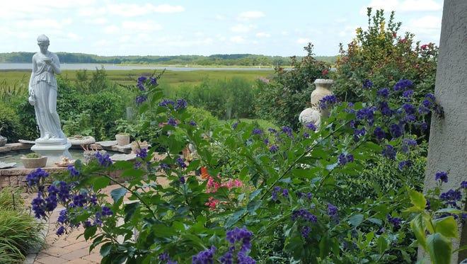 The bay offers a glittering back drop to Lisa Arni's backyard garden.