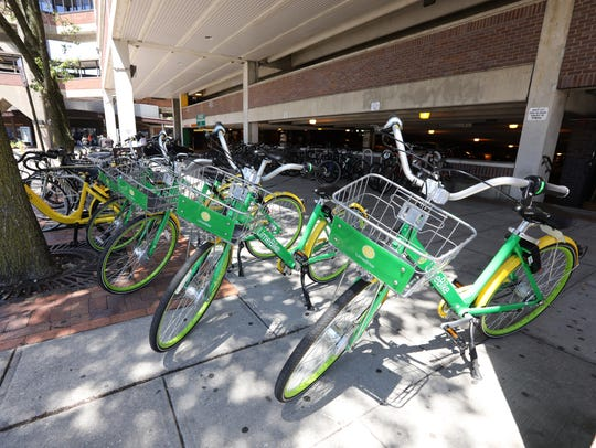 Several LimeBike and ofo bicycles, which are part of