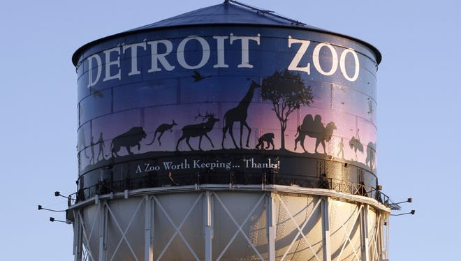 The Detroit Zoo is seeking human candidates to become it's next leader of its amphibian population.