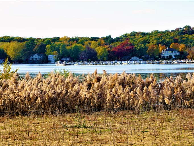 Saugatuck, Mich.: In this scenic lake town, soft sand