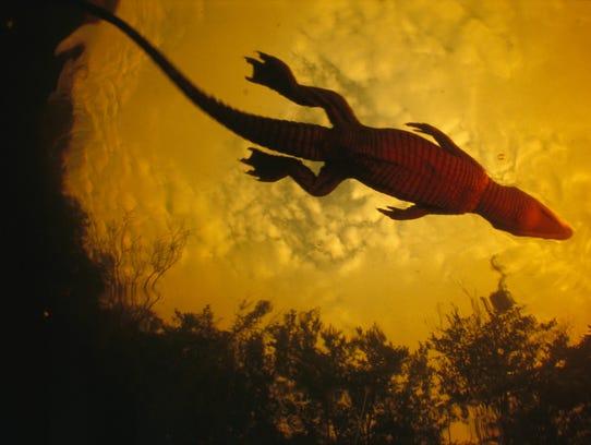 Exploring Louri Creek in 2003, Michael Nichols' teen