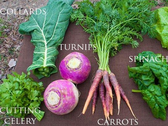 Produce from Inglewood Farm.