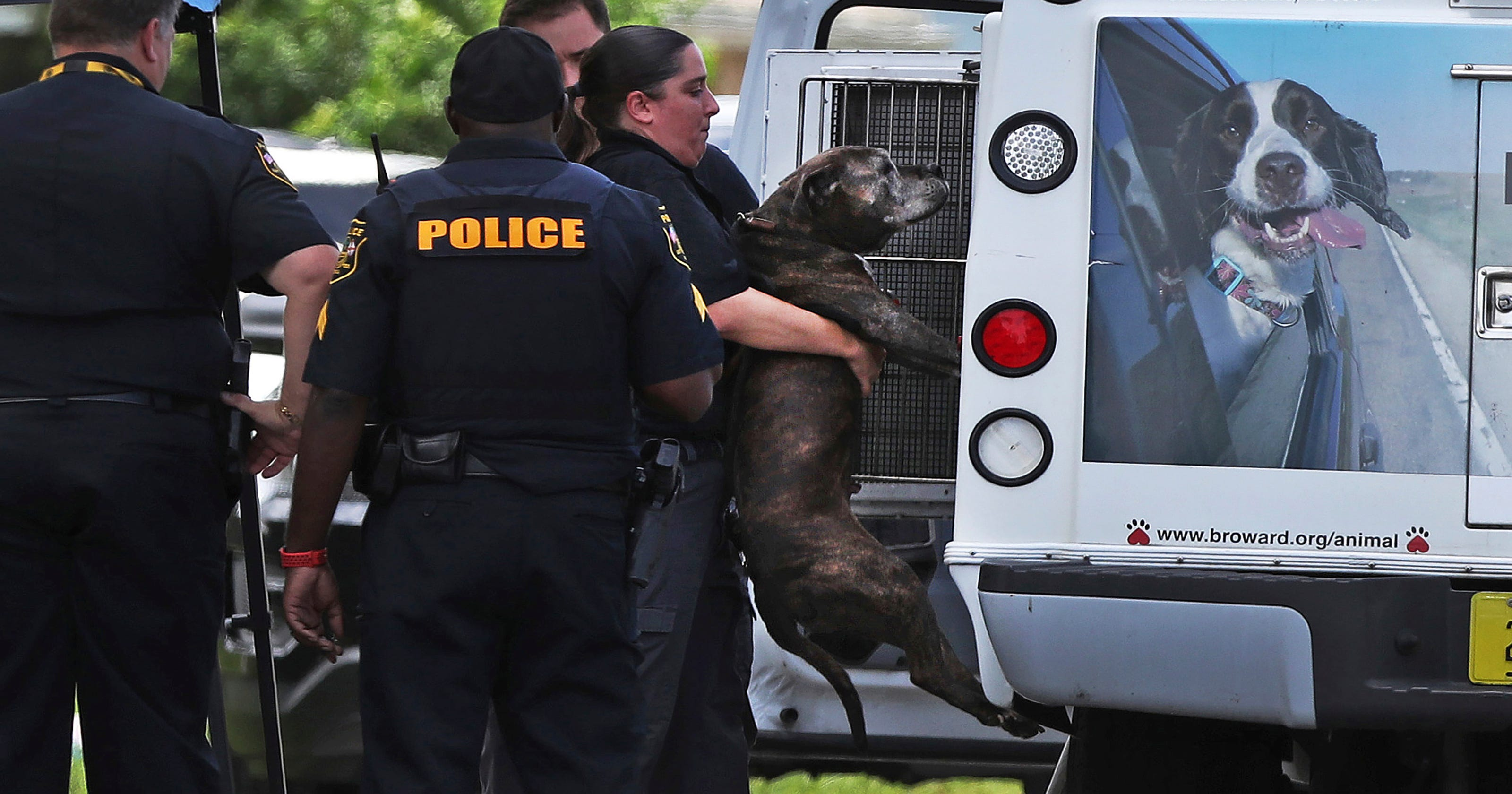 Pet pit bull attacks and kills 8-month-old baby girl in Miramar, Fla