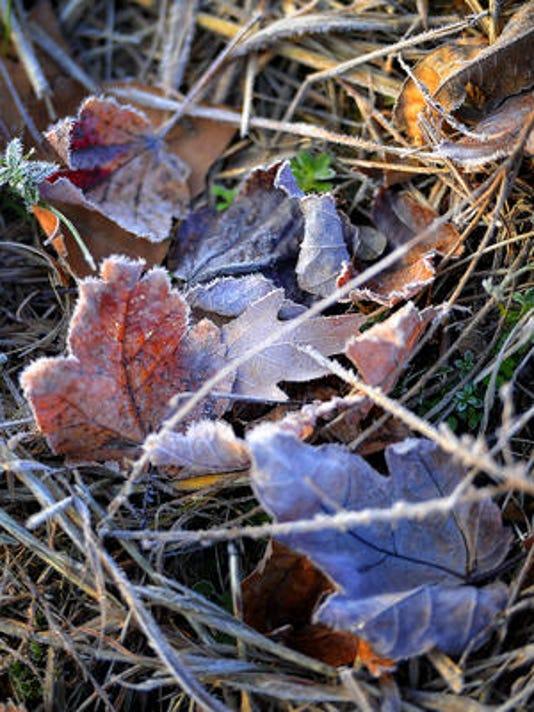635878392822414841-frost2.jpg